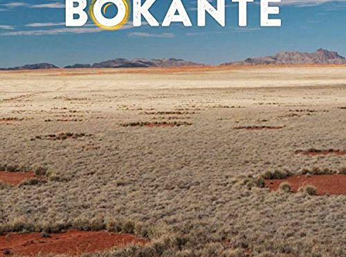 Bokanté's Stimulating Global Exchange