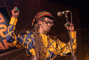 Cheikh Lo (Senegal) at Sauti za Busara 2013 - Photo by Peter Stanley