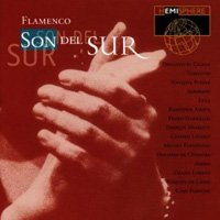 Various Artists - Flamenco: Son del Sur