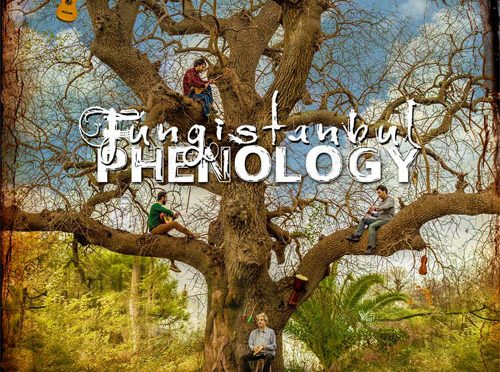 Beautifully-Crafted Phenology