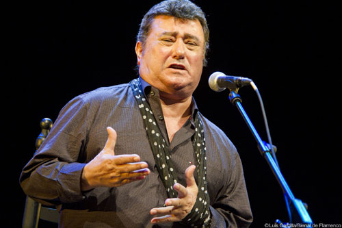 Acclaimed Flamenco Singer José Menese Dies at 74