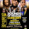 "Sounds of Reggae will return for Part 2 featuring ""Shaggy & Friends"" on Sunday, December 13th. The concert will take place at Kings Theatre in Brooklyn, New York. The […]"