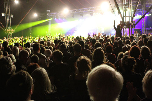 Audience at Towersey Festival 2015 - Photo by Phil Sofer