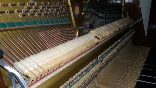 Campaign Started to Build Pianos in Rwanda