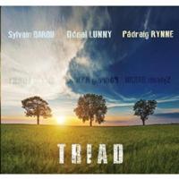 Sylvain Barou - Dónal Lunny - Pádraig Rynne - Triad