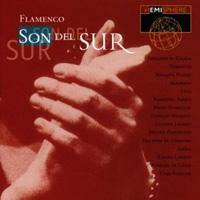 Various Artists - Flamenco: Son del Sur
