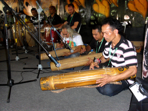 Percussion workshop at Rainforest World Music Festival 2013 - Photo by Madanmohan Rao