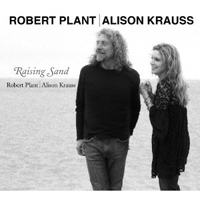 Alison Krauss & Robert Plant Collaboration Wins Grammy Award