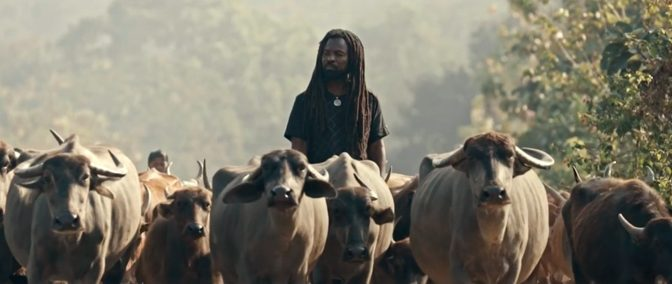 "Ghanaian Reggae Star Rocky Dawuni Releases ""Elevation"" Music Video"