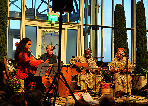 Siama Matuzungidi's-Afrobilly Blue in 2016 at Como Conservatory - Photo by Tom Smith