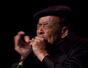 James Cotton - Photo by Mike Shea, Crosscut Saw Photography
